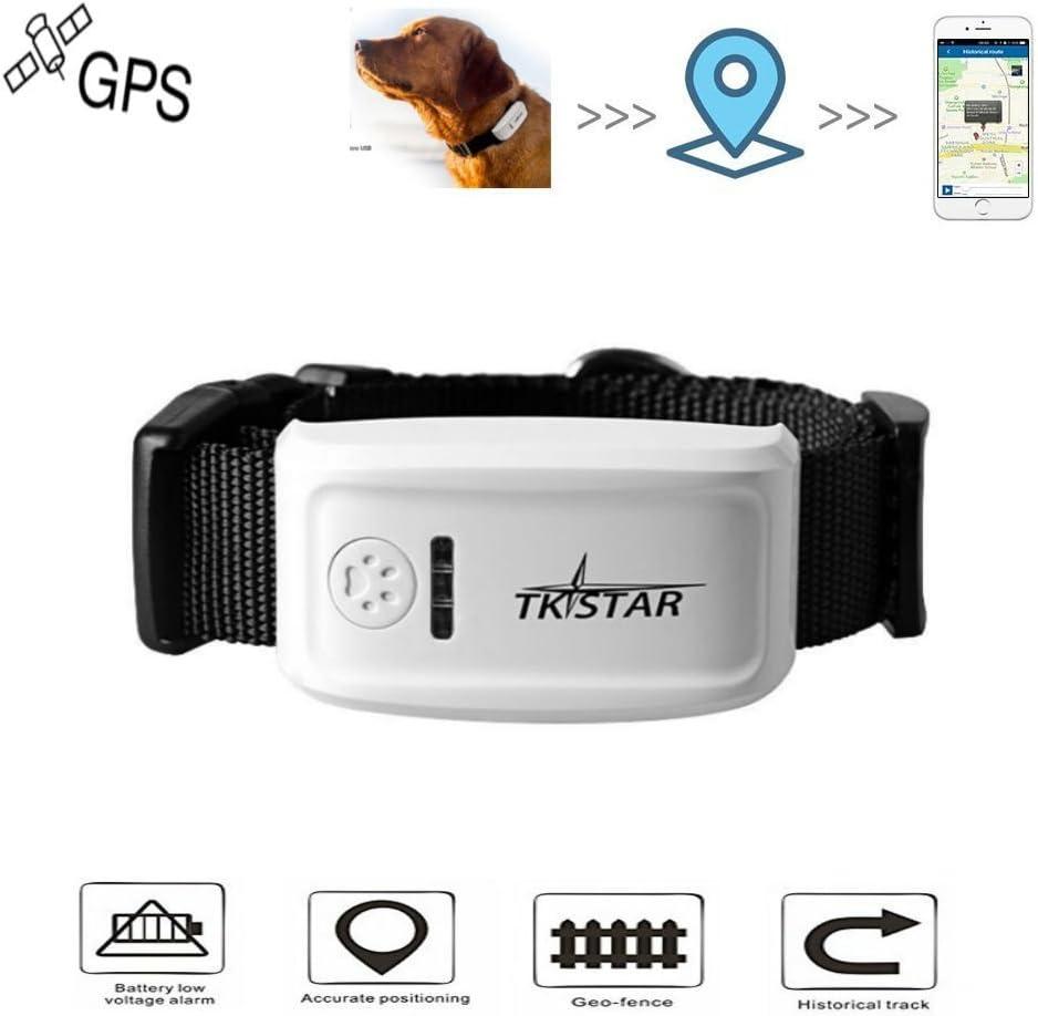 Hangang Pet GPS Tracker Collar, Localizador de Localización GPS en Tiempo Real, Collar para Perros Training GPS en Tiempo Real con La Aplicación Gratuita & Web Platform Rastreador de GPS