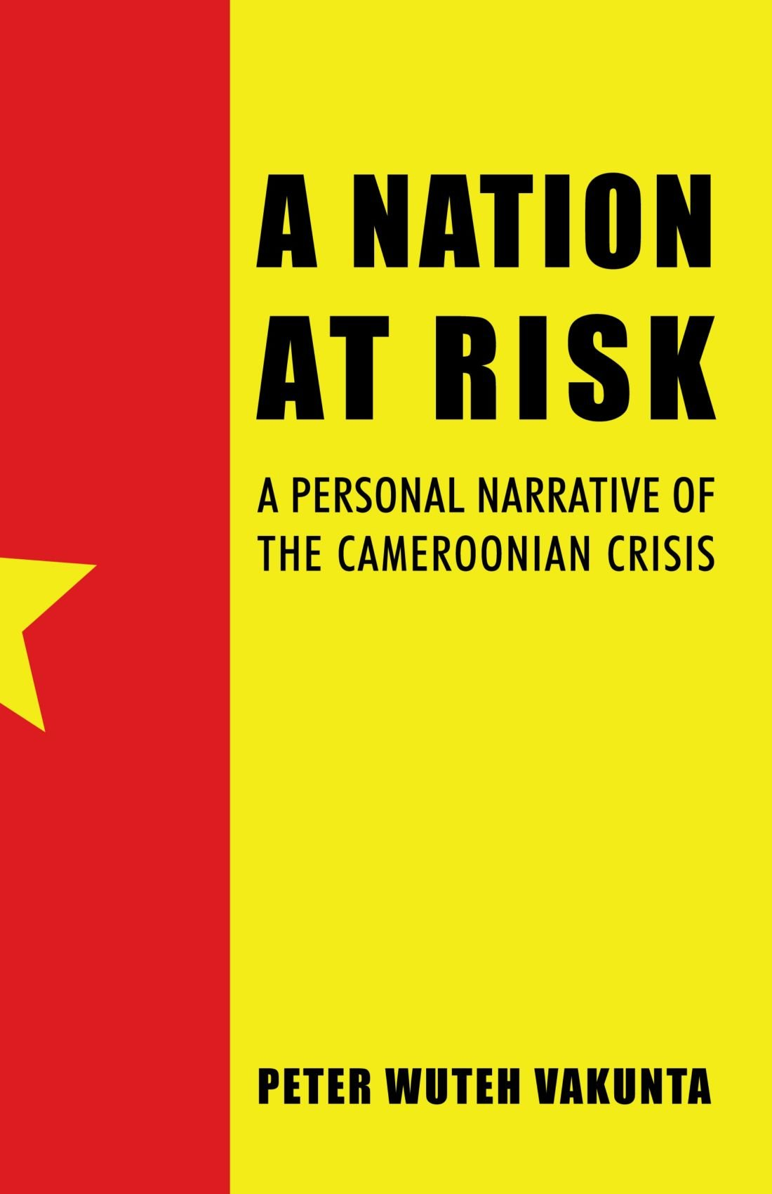 A Nation At Risk: A Personal Narrative Of The Cameroonian Crisis ebook