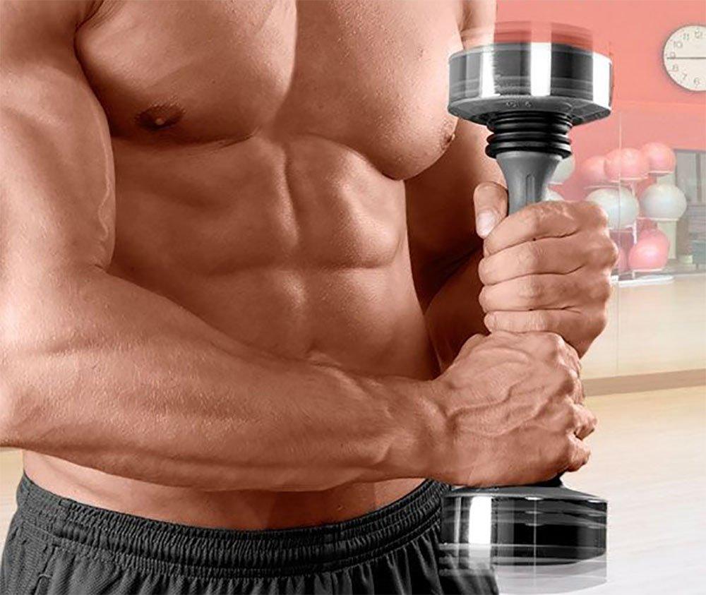 sacudido Pesas mano dispositivo bíceps trizepts armuskel ...