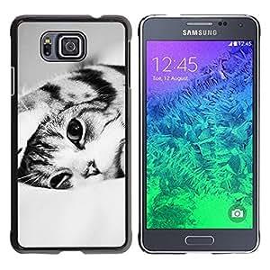 Caucho caso de Shell duro de la cubierta de accesorios de protección BY RAYDREAMMM - Samsung GALAXY ALPHA G850 - Black White Shorthair Cat