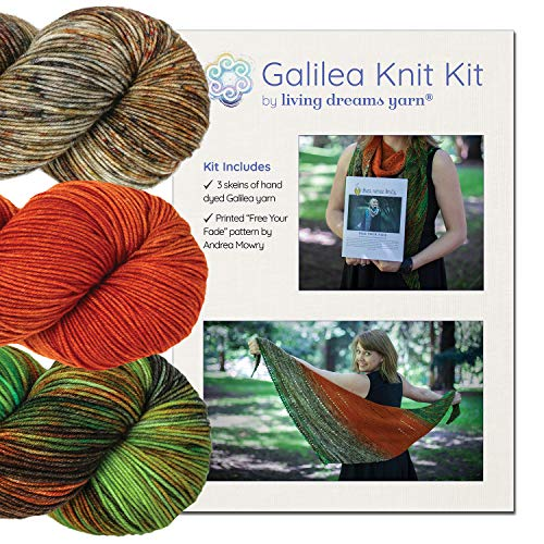 GALILEA SHAWL KNIT KIT Includes Three Complementing Skeins of Hand Dyed SuperWash Merino Yarn + Famous Free Your Fade Knitting Pattern. Shawl Kit: Gemini