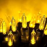 50 T5 LED Christmas Lights Gold, 25.5' Gold Christmas Tree Lights Mini Lights Indoor-Outdoor Christmas String Lights Holiday