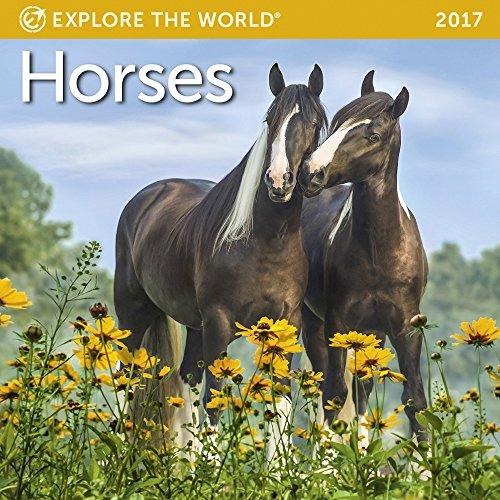 Horses Mini Wall Calendar 2017