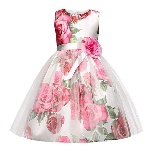 b95a72849d0fd Amazon.com: Dsood Infant Dress, 2019 Children Kid Infant Girls Zip Belt  Flower Formal Princess Net Yarn Tutu Dress: Clothing