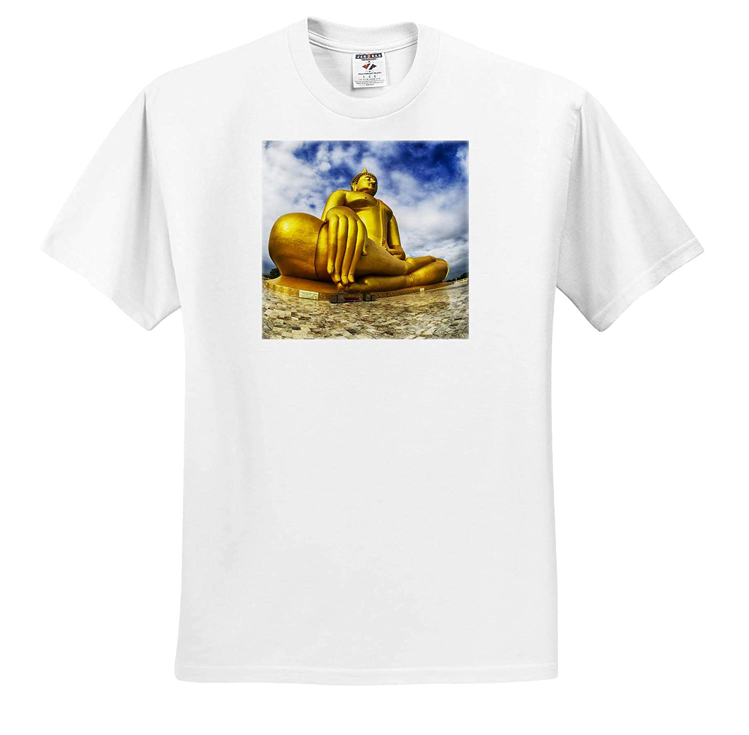 Golden Buddha in ANG Thong Province of Thailand Adult T-Shirt XL Thailand ts/_312825 3dRose Danita Delimont Asia
