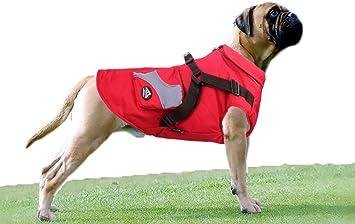 Babydog Ropa para Perros Mascotas, Abrigos Chaquetas de ...