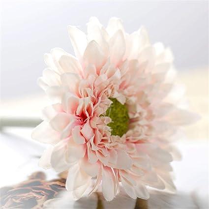 Xin Pang Palo Corto Fresca Pequeña única Flor Gerbera