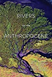 img - for Rivers of the Anthropocene book / textbook / text book