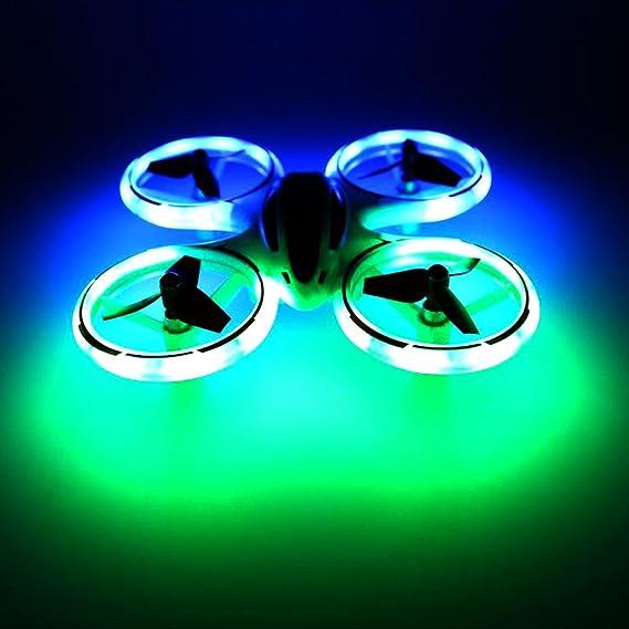 correas para perros fluorescentes