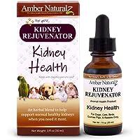 AMBER NATURALZ - Kidney REJUVENATOR - Kidney Health - for Petz - 1 Ounce