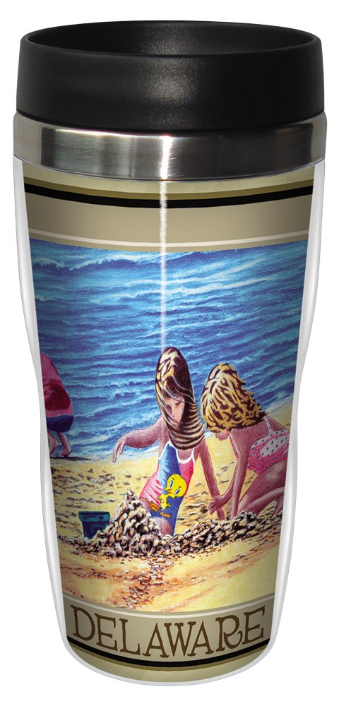 Multicolored Tree-Free Greetings sg23021 Coastal Delaware Kids at the Beach by David Linton Stainless Steel Sip N Go Travel Tumbler 16-Ounce