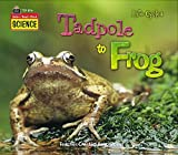 Tadpole to Frog, Sally Hewitt and Teacher Created Resources Staff, 1420681168