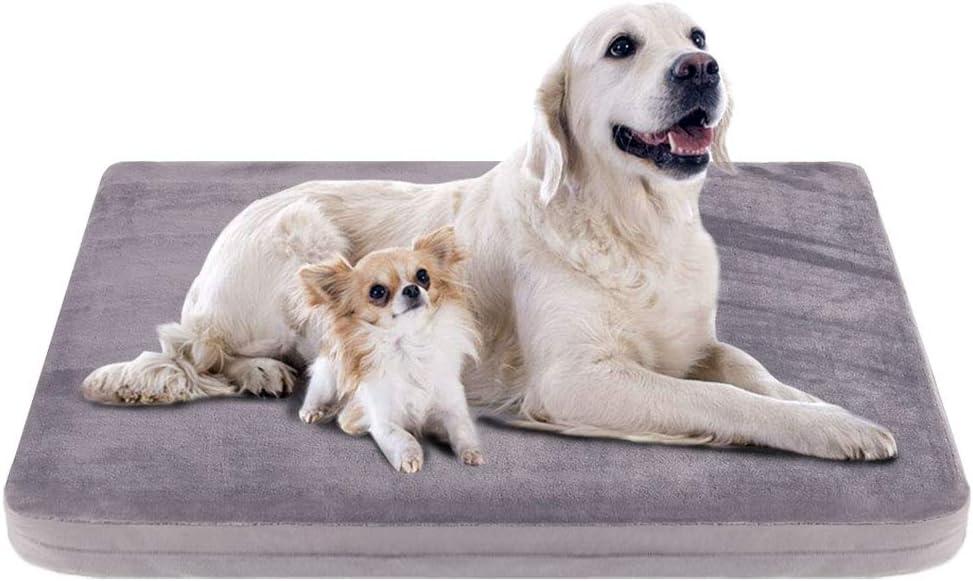 cama-para-perros-grandes-baratas