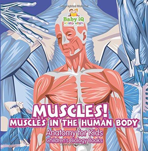 Muscles Human Body Anatomy Kids product image
