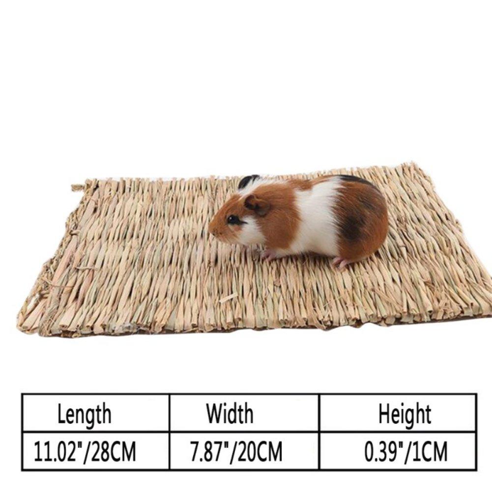 Leezo Piccolo Animale Masticare Giocattolo Beds Erba Naturale Intrecciato tappetini Sicuro e commestibili per criceti Parrot Guinea Pig e Conigli cincill/à Furetto