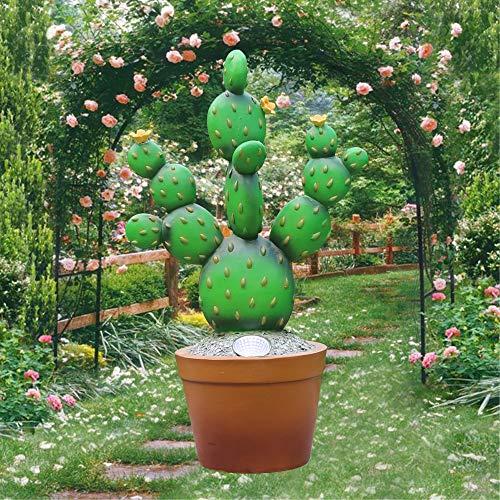 Cactus Garden Lighting