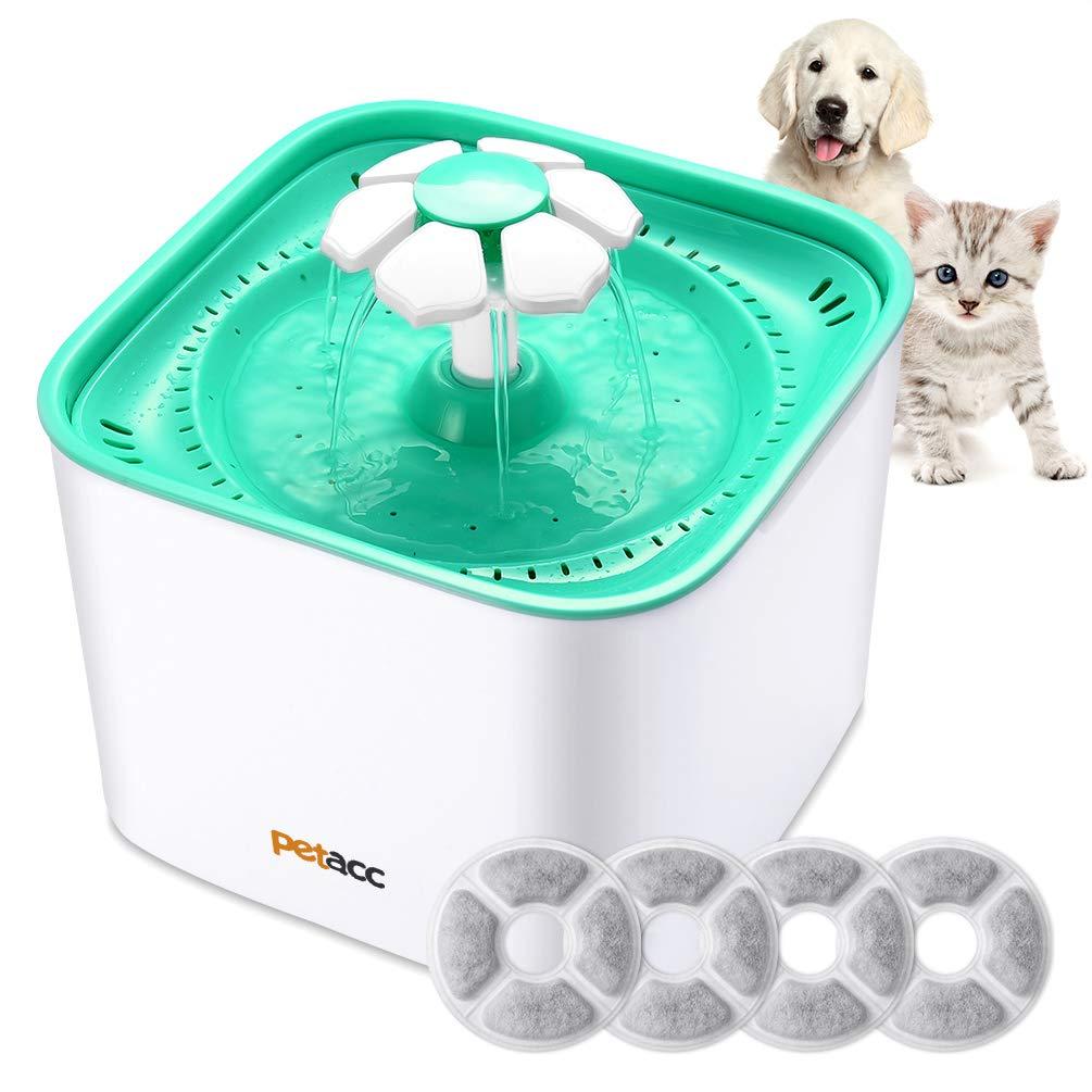 Fontaine à eau pour rafraichir un chat lors de temps chaud ou canicule