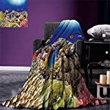 smallbeefly Ocean Digital Printing Blanket Wild Sea Life Colorful Ancient Coral Reefs Exotic Fishes Bali Indonesia Summer Quilt Comforter Tan Blue and Orange