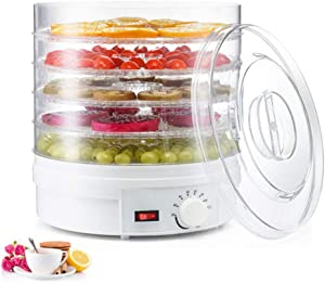 YAHUA LI Food Dehydrator Machine, Professional Electric Multi-Tier Preserver, Temperature Control Meat Beef Jerky Maker, Fruit Vegetable Dryer w/ 5 Stackable Trays, for Beginners