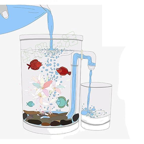 D@Qyy Mini Tanque De Plástico para Escritorio Ecologías Creativas: Pequeños Cambios Mágicos En El Agua del Acuario,Squarebody: Amazon.es: Hogar