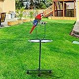 48'' Bird Parrot Play Stand Cockatoo Gym Perch Metal Pet Feeder w/ Bowls Wheels