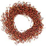 The Wreath Depot Claremont Fall Pip Berry Wreath, 22 Inches