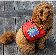 Authentic Service Dog Vest Small