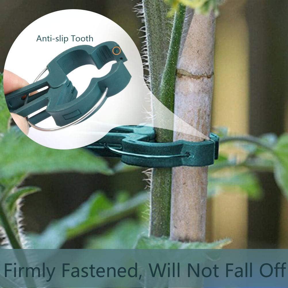 TIMESETL 100PCS Clips para Plantas de jardín (tamaño 2), Clips ...