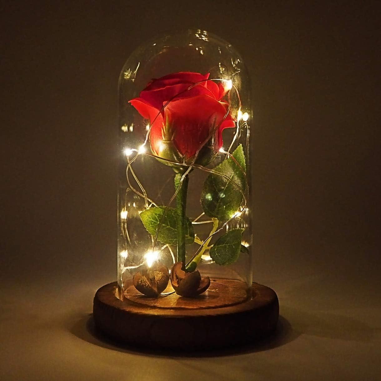 Jieway - Rosa de La Bella y la Bestia, Rosa en una cúpula de cristal con luces LED USB, Base de madera, regalo para el día de San Valentín o bodas, madera, Rojo