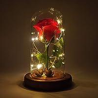 """""""La Belle et la Bête"""" Enchanted Rose, Élégant Dôme en Verre avec Lumières LED Pine Base, Beauty and Beast Magic Décor (Rouge)"""