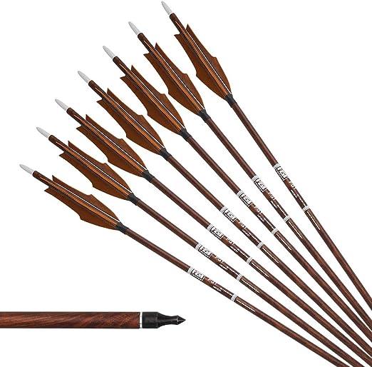 "6//12//24//48× 30/"" Archery Carbon Arrows Turkey Feather SP600 F Recurve Bow Hunting"