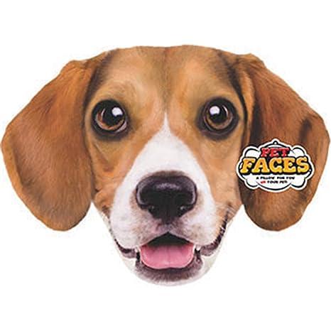 Amazon.com: Pet caras Beagle almohada: Mascotas