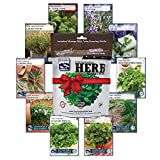 Sustainable Seed Company Variety Herb Seed Culinary 10 100% Non Gmo Heirloom Basi, Collection Only