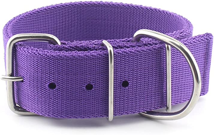 Tough Luv Buckle Harness