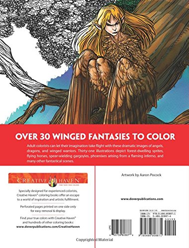 Buy Creative Haven Winged Fantasy Designs Coloring Book Online At Low Prices In India