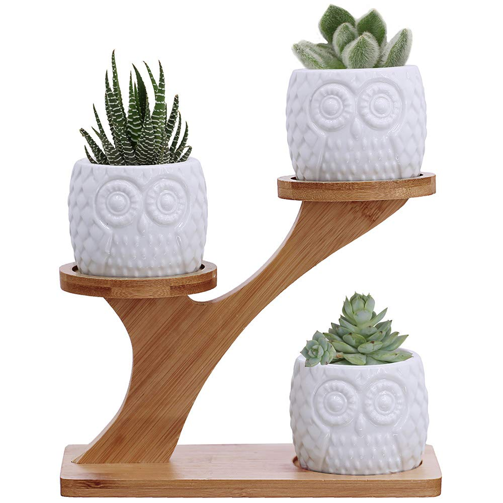 3pcs Owl Succulent Pots with 3 Tier Bamboo Saucers Stand Holder - White Modern Decorative Ceramic Flower Planter Plant Pot with Drainage - Home Office Desk Garden Mini Cactus Pot Indoor Decoration by BESTTOYHOME