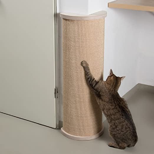 Rascador de esquina para gatos: Amazon.es: Productos para mascotas
