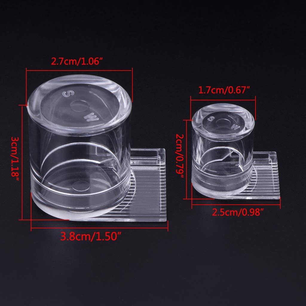 MB-LANHUA Attrezzatura per Apicoltura , Alimentatore di Acqua Formica Fattoria acrilica Area di Alimentazione Trasparente per Formica Nido di Insetto 2 Dimensioni