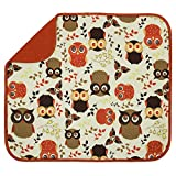 owl kitchen decor STS 582201 Owl Dish Drying Mat, Standard,