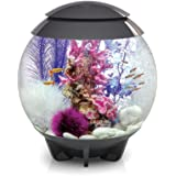 biOrb Halo Aquarium 30L avec Moonlight LED pour Aquariophilie Gris