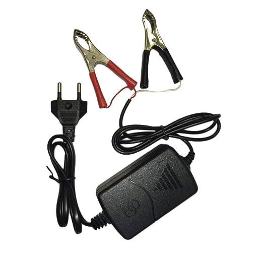 Kitechildheed - Cargador de batería multimodo para Moto ATV ...