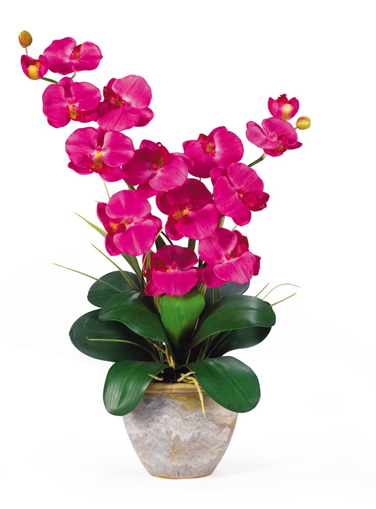 Nearly Natural 1026-BU Double Phalaenopsis Silk Orchid Flower Arrangement, Beauty