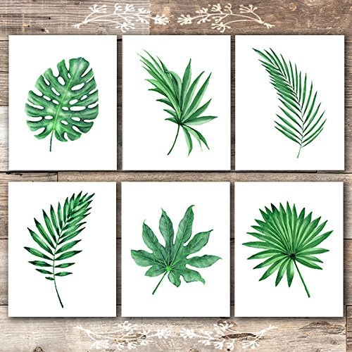 Tropical Wall Decor Art - Tropical Leaves Wall Decor Art Prints - Botanical Prints Wall Art - (Set of 6) - Unframed - 8x10s