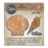 Sizzix Tim Holtz Bigz Die with Texture Fades Folder - Seashells