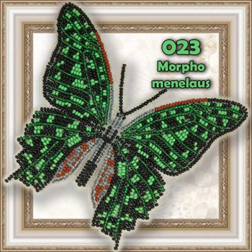 Butterfly Bead Embroidery kit Counted Beaded Cross Stich Beading on Plastic Canvas Bead Pattern Needlework Counted Glass Beads Kits Perle (023) ()