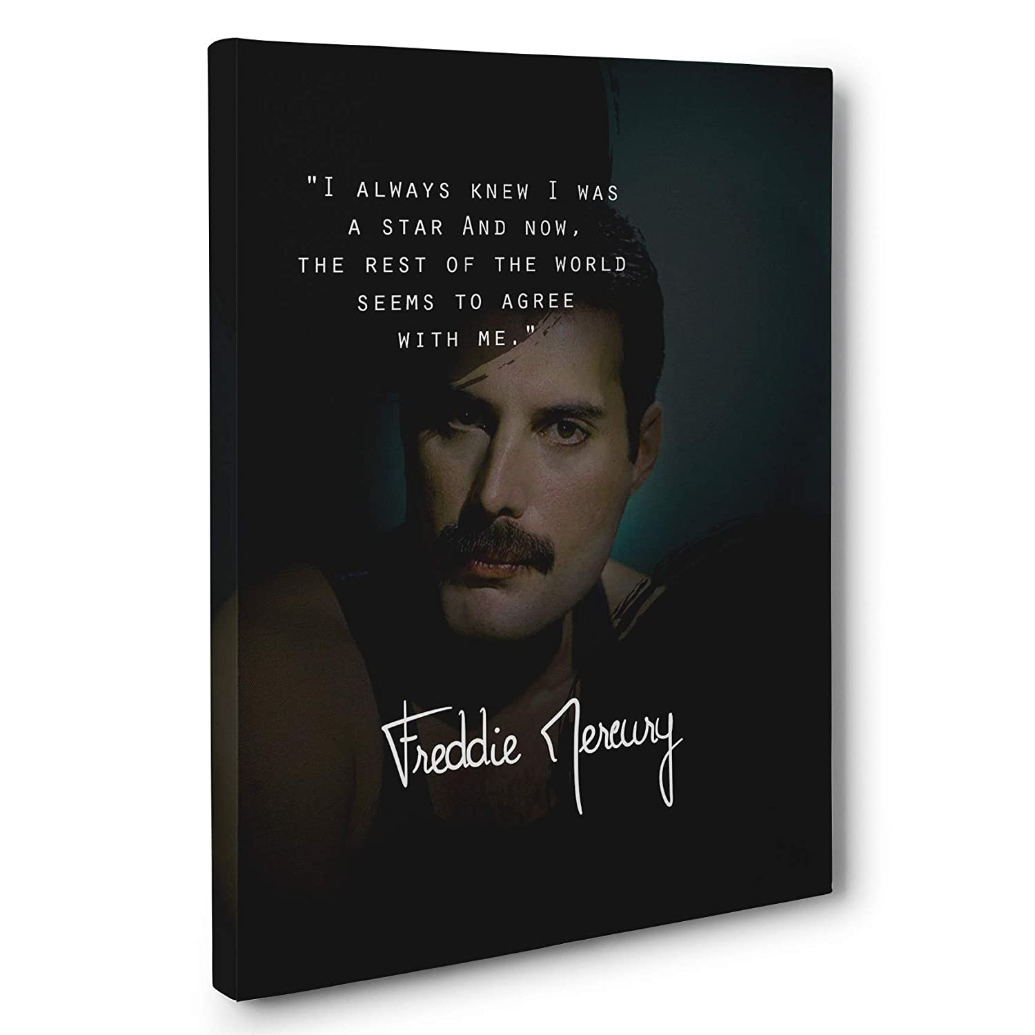 9+ Freddie Mercury Quotes