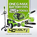 Greenworks 8-Inch 40V Cordless Pole Saw