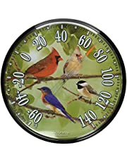 AcuRite 01781 12.5-Inch Wall Thermometer, Songbirds, Pack of 1, Multicolor