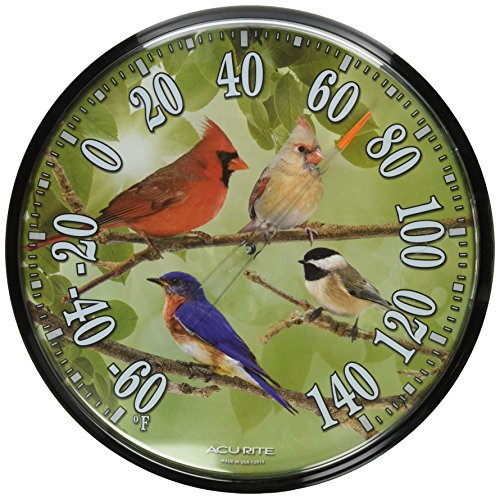 AcuRite 01781 12 5 Inch Thermometer Songbirds