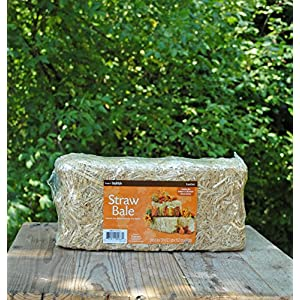 Wayhome Fair Straw Bale 13in - Excellent Home Decor - Indoor & Outdoor 12